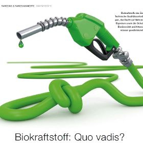 Biokraftstoff: Quo vadis?