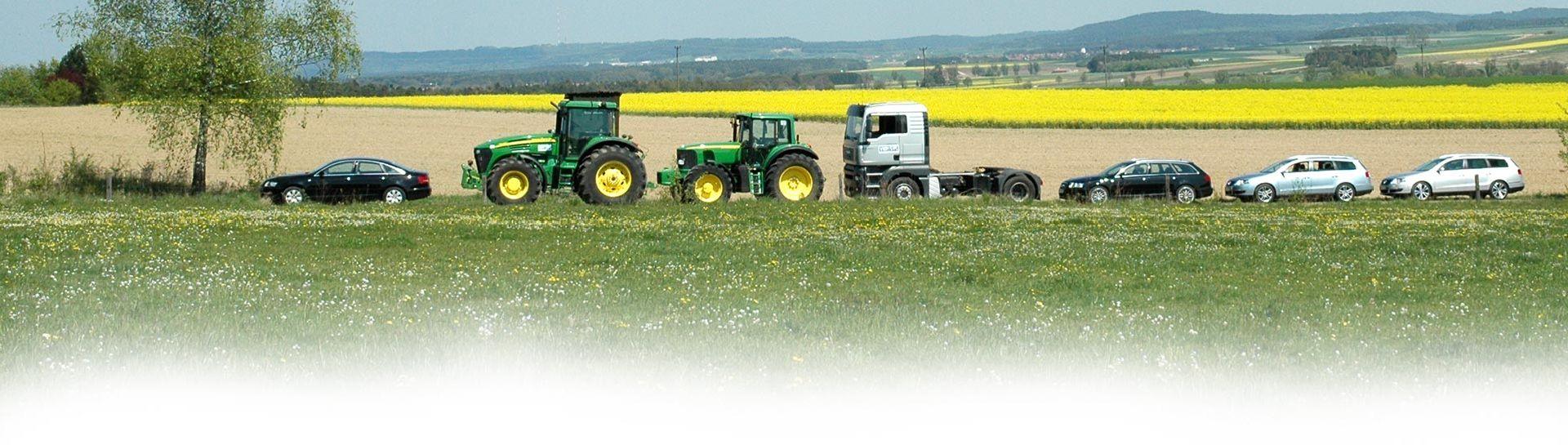 Konzepte zu Anbau, Herstellung und Verwendung von Pflanzenölen